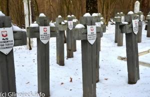 Cmentarz w Ościsłowie (4)