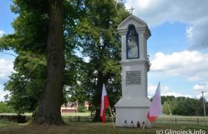 Piknik Dziektarzewo (134)