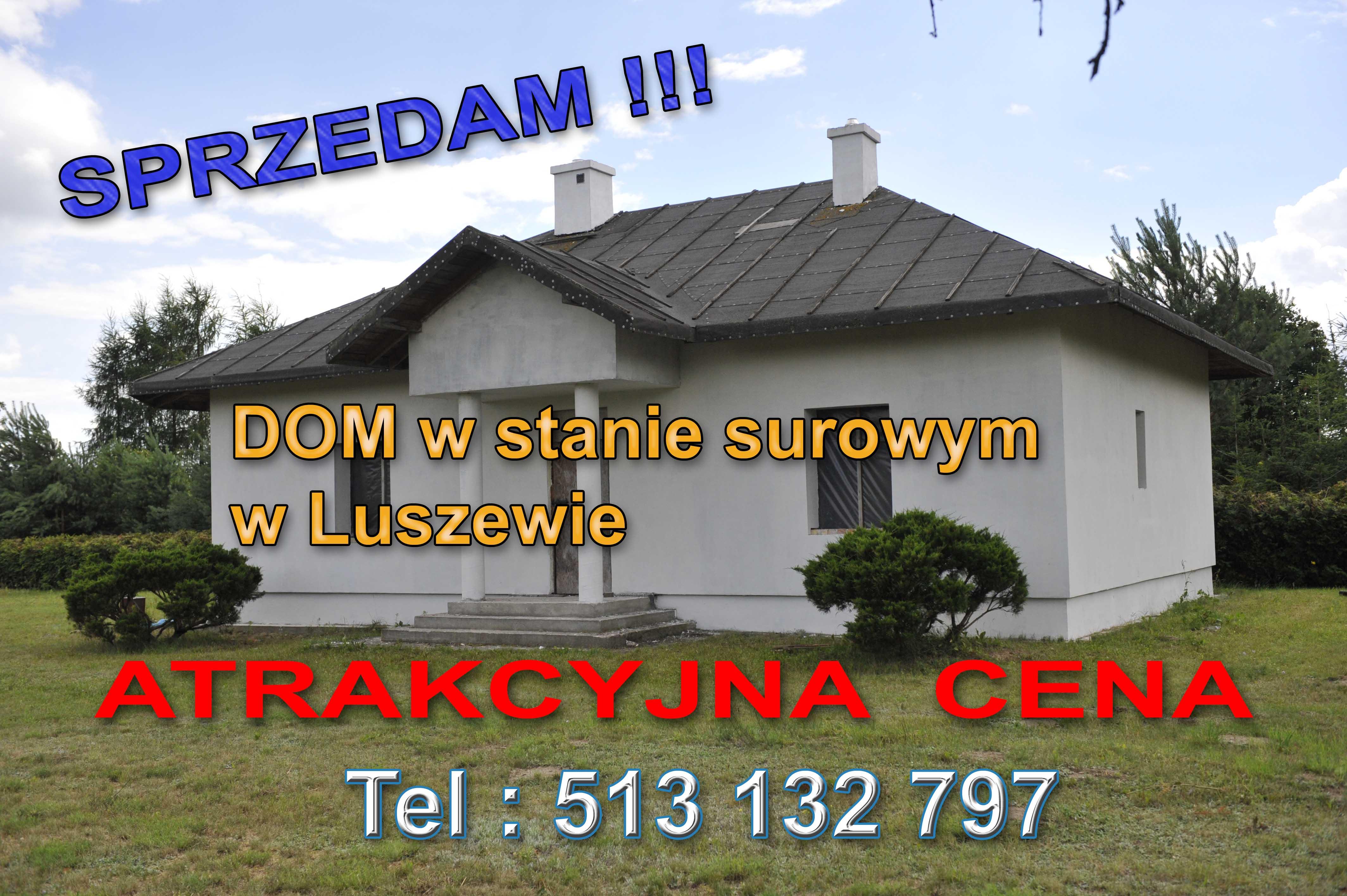 Dom Luszewo