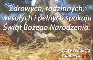 życzenia glinojeck.info