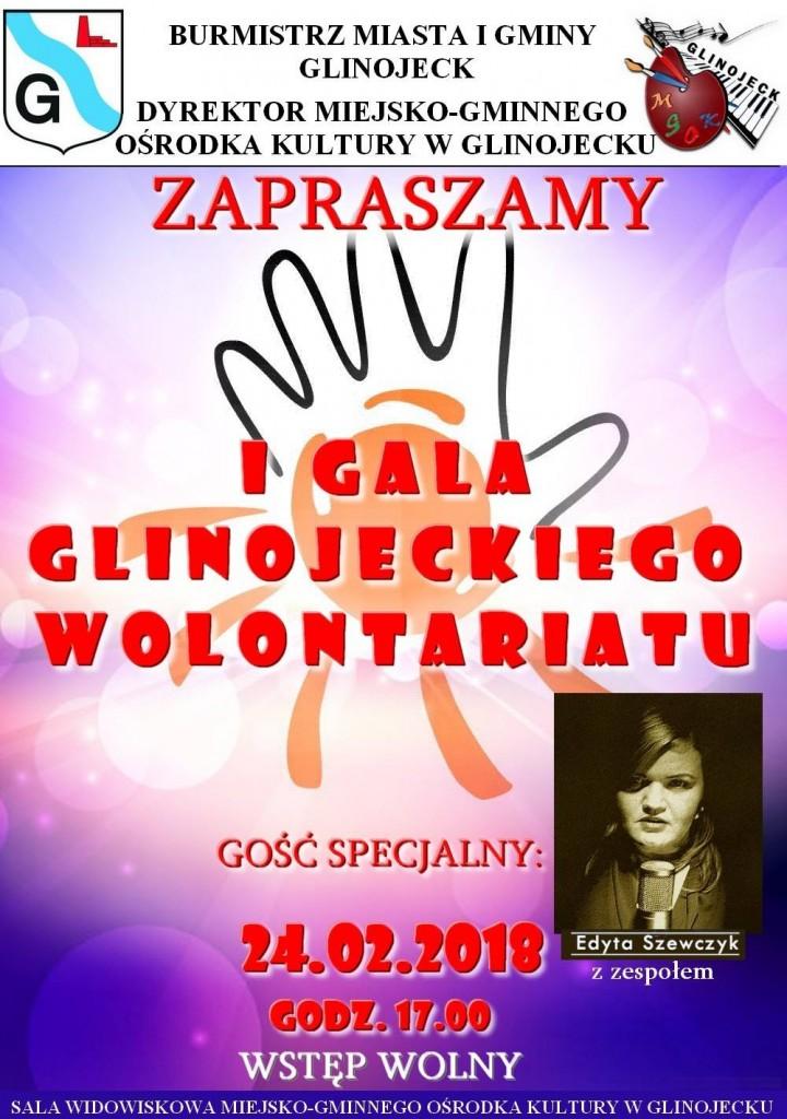 I_Gala_Glinojeckiego_Wolontariatu